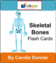 Skeletal Bones Flash Cards - PDF Download  [Download] -     By: Candie Donner
