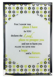 Jeremiah 29:11 Mirror Plaque  -