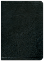 ESV Ryrie Study Bible, Black Calfskin Leather    -              By: Charles Ryrie