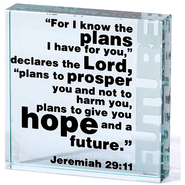 For I Know the Plans, Glass Block  -