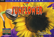 Life Cycles: Sunflower   -