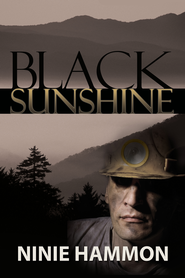 Black Sunshine - eBook  -     By: Ninie Hammon