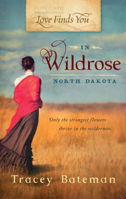 Love Finds You in Wildrose, ND - eBook  -     By: Tracey Cross