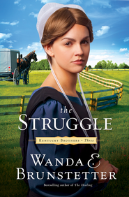 The Struggle - eBook  -     By: Wanda E. Brunstetter