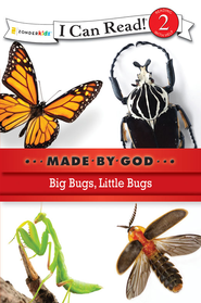 Big Bugs, Little Bugs - eBook  -
