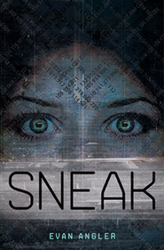 Sneak, Swipe Series #2   -              By: Evan Angler