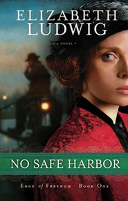 No Safe Harbor - eBook  -     By: Elizabeth Ludwig