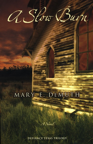 A Slow Burn: A Novel - eBook  -     By: Mary E. DeMuth