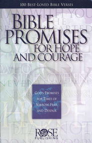Bible Promises For Hope and Courage: God's Promises for Times of  Sorrow, Fear, and Despair  -