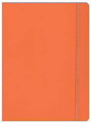Ecosystem Ruled Journal; Clementine, Large   -