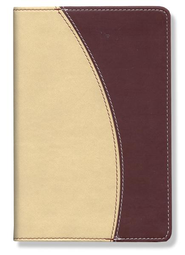 NIV Compact Thinline Bible, Italian Duo-tone, camel/cranberry 1984  -