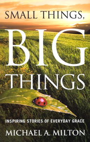 Small Things, Big Things: Inspiring Stories of Everyday Grace  -     By: Michael Milton