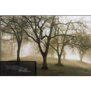 Misty Park, John 8:12 Mounted Print  -