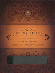 HCSB Study Bible, Black & Gray Simulated Leather  -