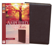 Amplified Zippered Collection Bible, Large Print, Burgundy  -