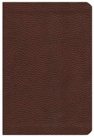 NIV Life Application Study Bible, Bonded Leather, Burgundy  -