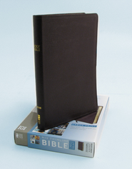 NIV Thinline Large-Print Bible, burgundy  -