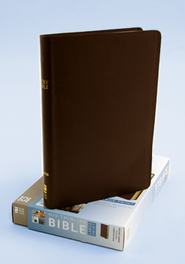 NIV Thinline Large-Print Bible, bonded leather--brown  -