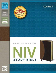 NIV Study Bible, Compact, Imitation Leather, Tan Burgundy  -