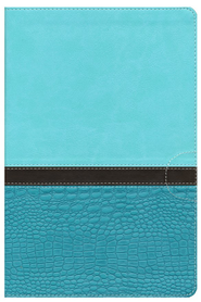NIV Study Bible, Large Print, Imitation Leather, Turquoise Caribbean Blue - Imperfectly Imprinted Bibles  -