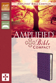 Amplified Bible Compact, Italian Duo-Tone, Purple Metallic  -