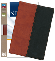 NIV and NKJV Side-by-Side Bible: Two Bible Versions Together for Study and Comparison, Italian Duo-Tone, Russet/Black  -