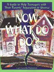 Now What Do I Do?: A Guide to Help Teenagers with Their Parents' Separation or Divorce  -     By: Lynn Cassella-Kapusinski