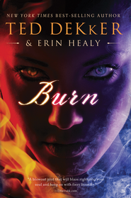 Burn - eBook  -     By: Ted Dekker, Erin Healy