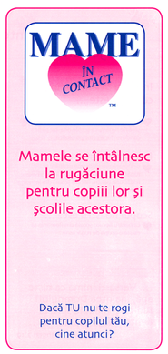 Ministry Brochure - Romanian, 25 Pack   -     By: Fern Nichols
