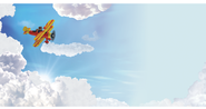 Flying Pig Outdoor Banner  -