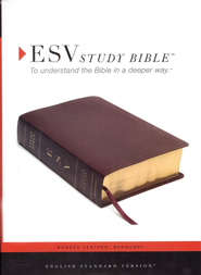 ESV Study Bible--Bonded leather, Burgundy  -