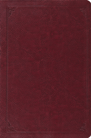 ESV Verse-by-Verse Reference Bible (TruTone, Burgundy, Frame Design)  -