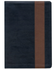 ESV Study Bible, TruTone, Navy/Tan, Band Design  -