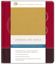 ESV Journaling Bible (TruTone, Raspberry/Chocolate, Flourish Design)  -