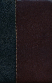 ESV Vintage Thinline Bible (Black/Chestnut, Vintage Design)  -