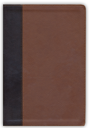 ESV Verse-by-Verse Reference Bible (TruTone, Brown/Cordovan, Portfolio Design)  -