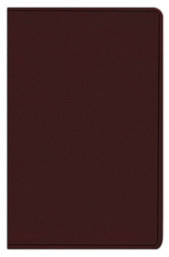 ESV Gift Bible, Coffee imitation leather  -