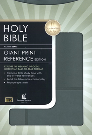 KJV Giant Print Reference Bible - LeatherSoft Burnished Stormcloud Gray Pinstripe  -