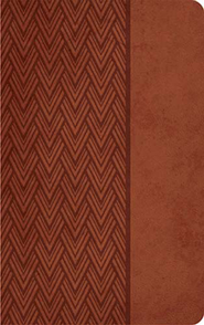 KJV Giant Print Center Column Reference Bible, Leathersoft, auburn  -