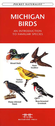 Michigan Birds   -