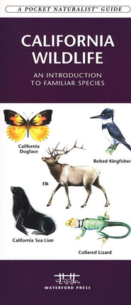California Wildlife   -