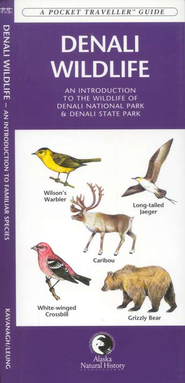 Wildlife of Denali National Park   -