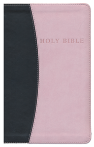 KJV Giant Print Personal Size Reference Bible--imitation leather, pink/chocolate - Imperfectly Imprinted Bibles  -