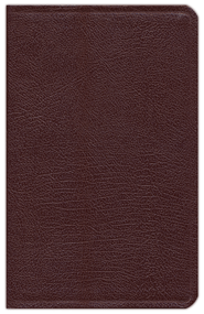 NIV Hebrew-Greek Key Word Study Bible, Bonded Leather Burgundy 1984  -     By: Spiros Zodhiates, Warren Baker