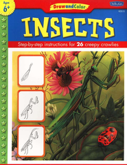 Draw and Color Insects   -     By: Illustrated by Diana Fisher     Illustrated By: Diana Fisher