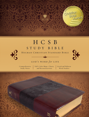 HCSB Study Bible, Mahogany Simulated Leather, Thumb-Indexed  -