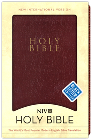 NIV Gift and Award Bible, Leather-Look, Burgundy  -