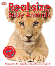 Lifesize Baby Animals  -