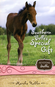 #3: Southern Belle's Special Gift  -     By: Marsha Hubler