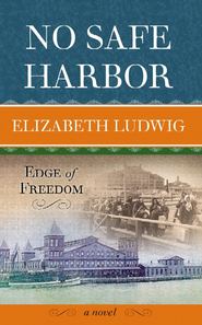 No Safe Harbor Large Print  -              By: Elizabeth Ludwig